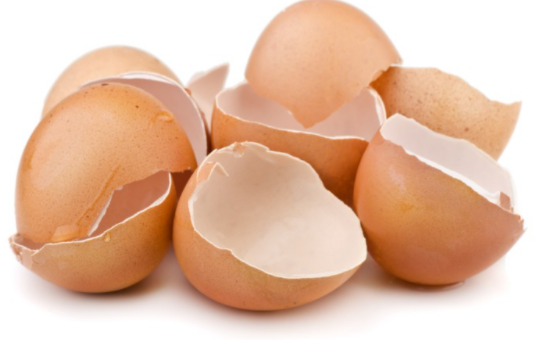 How To Sharpen Blender Blades With Eggshells In 2021